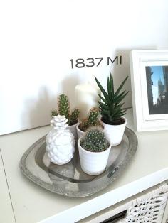 interior-ananas-2