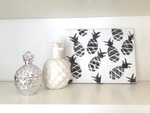interior-ananas