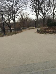 NYC-Centralpark-travelguide-2