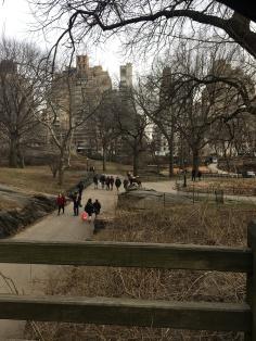 NYC-Centralpark-travelguide